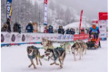 Musher Race 2021